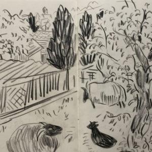 Franziska Guettler_veda1_Zeichnung_2015