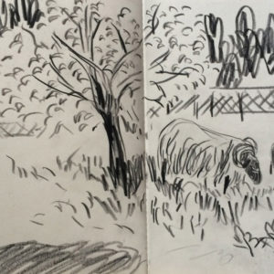 Franziska Guettler_veda3_Zeichnung_2015